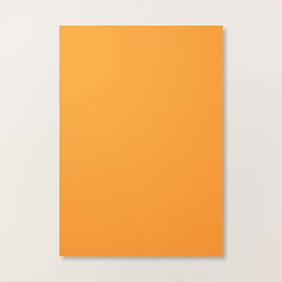 Pumpkin Pie A4 Card Stock