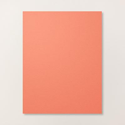 Calypso Coral 8-1/2 X 11 Card Stock
