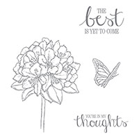 Best Thoughts Clear-Mount Stamp Set by Stampin' Up!