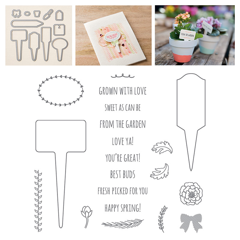 index for From the Garden Stamp set and thinlits bundle