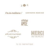 Juste Fantastique Clear Stamp Set (French)