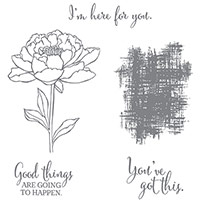 You've Got This Wood Mount Stamp Set