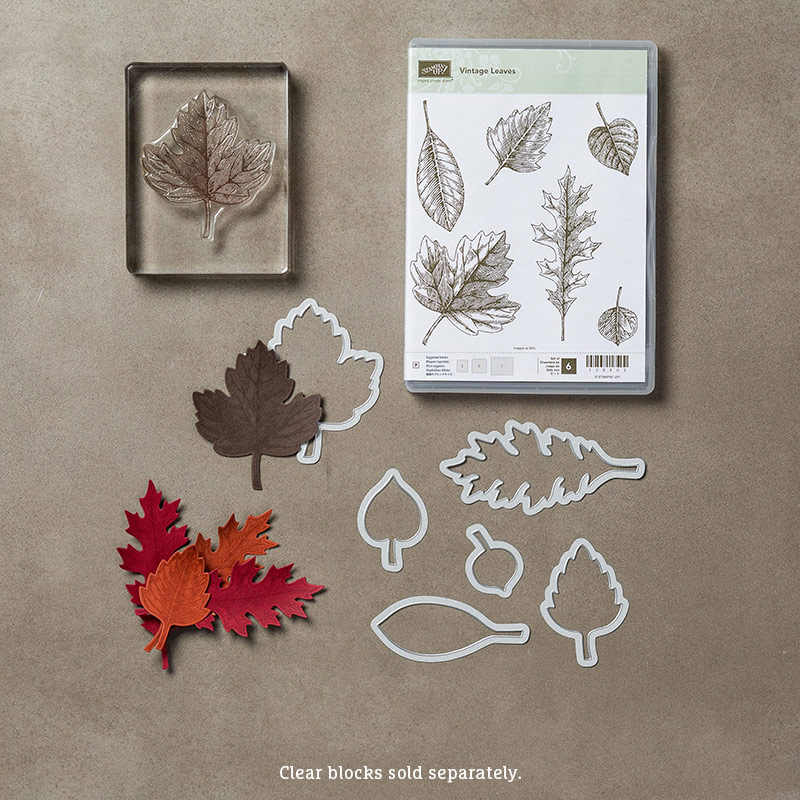 Vintage Leaves Bundle, Stampin' Up!