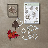 Vintage Leaves Photopolymer Bundle by Stampin' Up!