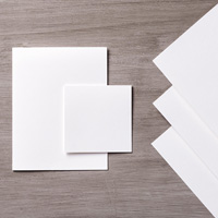 Whisper White 8-1/2 x 11 Thick Cardstock