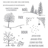 De ma fenêtre Photopolymer Stamp Set (French) by Stampin' Up!