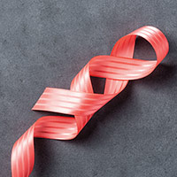 Watermelon Wonder 1 Stitched Satin Ribbon by Stampin' Up!