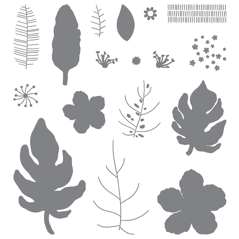 Botanical Blooms & Tin of Cards stamp sets