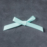 Pool Party 3/8 (1 cm) Stitched Satin Ribbon