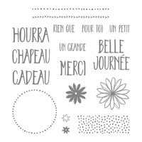Parfaitement emballé Photopolymer Stamp Set (French)
