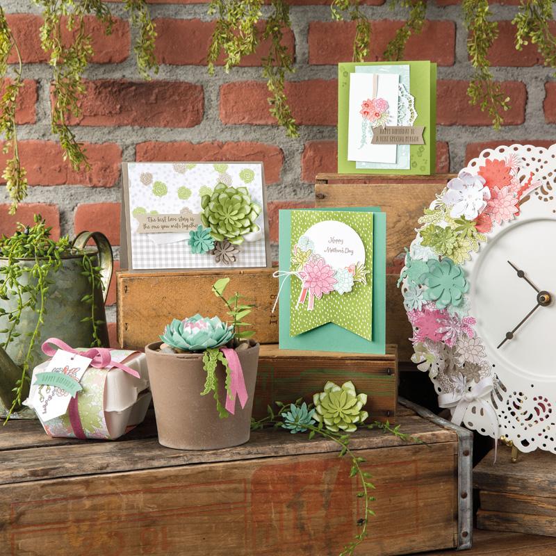 Afbeeldingsresultaat voor succulent garden stampin up