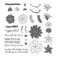 Si succulent Photopolymer Stamp Set