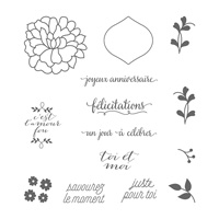 Amour fou Clear-Mount Stamp Set