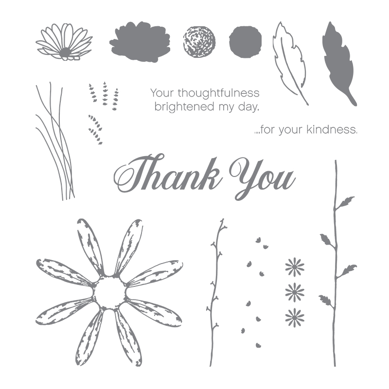 Daisy Delight Photopolymer Stamp Set