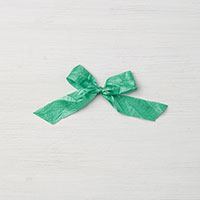 Emerald Envy 5/8 Crinkled Seam Binding Ribbon