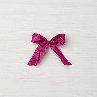 Berry Burst 5/8 Crinkled Seam Binding Ribbon