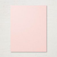 Cardstock in Powder Pink and Whisper White
