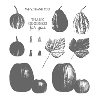 Gourd Goodness Photopolymer Stamp Set