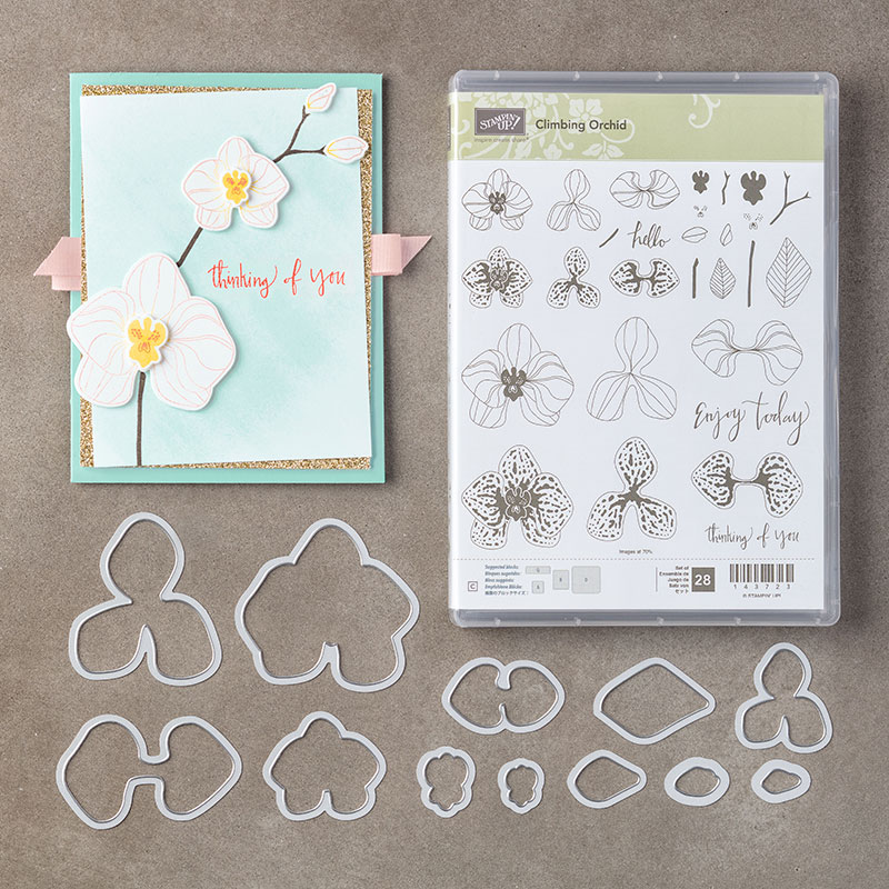 Climbing Orchid Photopolymer Bundle
