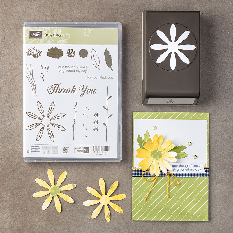 Daisy Delight Bundle, Stampin' Up!