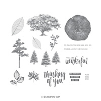 Rooted in Nature Clear Mount Stamp Set