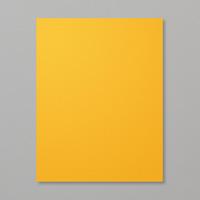 Mango Melody 8.5 x 11 Cardstock